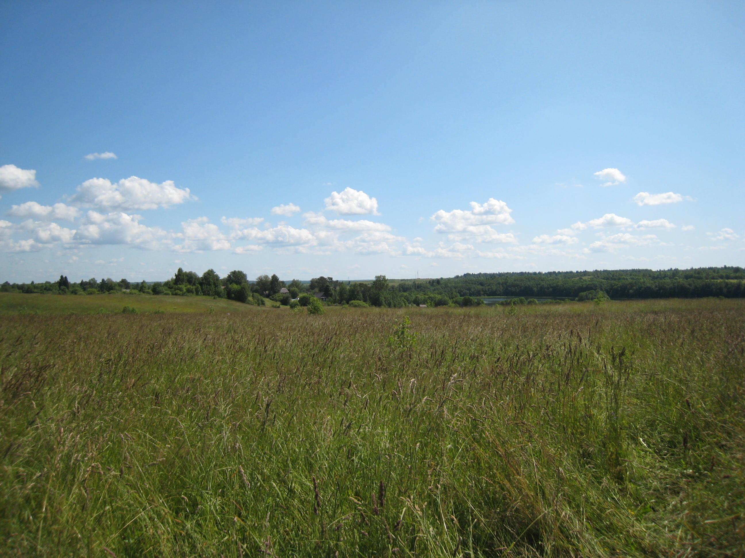 купить поле земли 1 гектар спб
